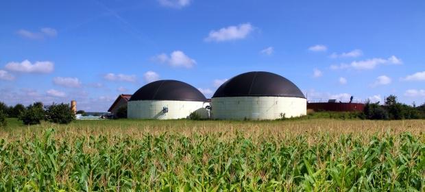 Biomass and Biogas plant